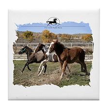 Three Foals Tile Coaster