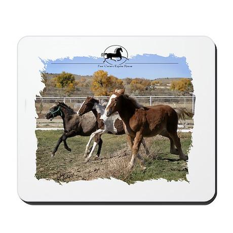 Three Foals Mousepad