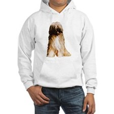 Tibetan Terrier portrait Hoodie
