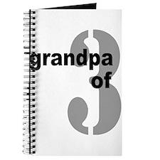 GRANDPA 3 Journal