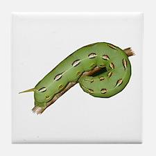 Helaine's Hornworm Tile Coaster