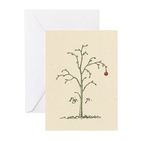 Arboretum Tree Holiday Greeting Cards (Pk of 10)