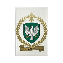 THEBEAU Family Crest Rectangle Magnet (10 pack)