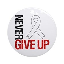 Lung Cancer Never Give Up Ornament (Round)