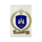 TEMPLE Family Crest Rectangle Magnet