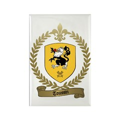 TOUSSIN Family Crest Rectangle Magnet (10 pack)