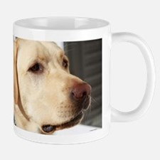 Yellow Lab (photo) Mug