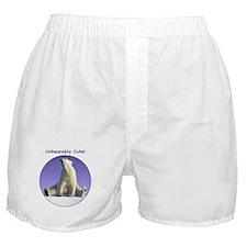 Unbearably Cute! Boxer Shorts