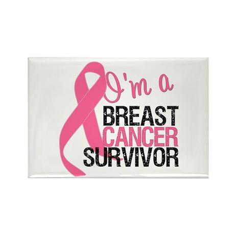 I'm a Breast Cancer Survivor Rectangle Magnet (10