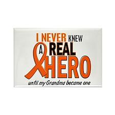 Never Knew A Hero 2 ORANGE (Grandma) Rectangle Mag
