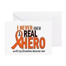 Never Knew A Hero 2 ORANGE (Grandma) Greeting Card