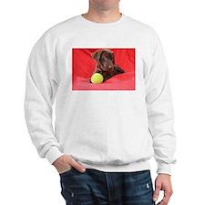Chocolate Puppy #2 Sweatshirt