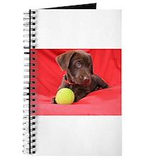 Chocolate Puppy #2 Journal