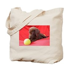 Chocolate Puppy #3 Tote Bag