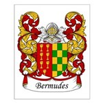Bermudes Family Crest Small Poster