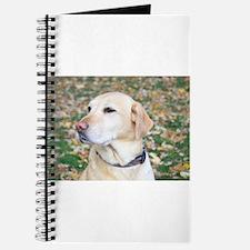 Yellow Lab #2 Portrait Journal