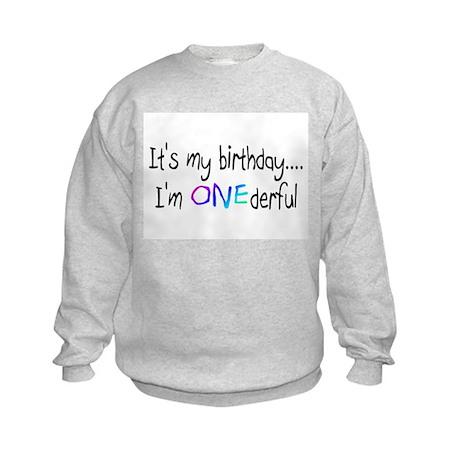 It's My Birthday, I'm One-derful Kids Sweatshirt
