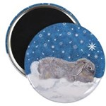 Rabbit in Winter snow 2.25