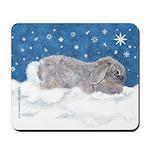 Rabbit in Winter snow Mousepad