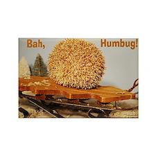 Bah Humbug Hedgehog! Rectangle Magnet