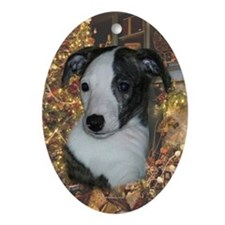 Whippet Pup Xmas Oval Ornament