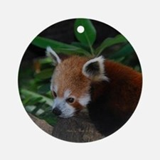 Red Panda 1 Ornament (Round)