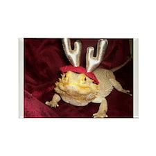 Reindeer Beardie Rectangle Magnet