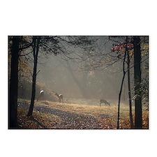 Unique Deer Postcards (Package of 8)