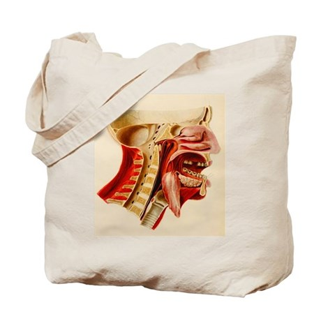 Vintage Anatomy Diagram Tote Bag