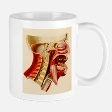 Vintage Anatomy Diagram Mug