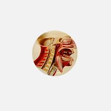 Vintage Anatomy Diagram Mini Button