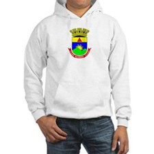 Cute Brazil coat of arms Hoodie