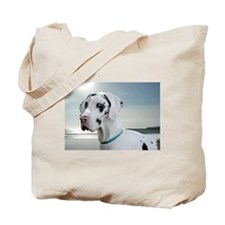 Blue Eyes, Blue Skies Tote Bag