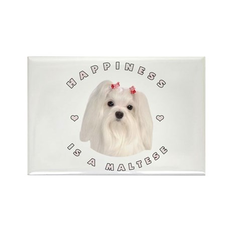 Happiness is a Maltese! Rectangle Magnet
