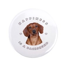 "Happiness is a Dachshund! 3.5"" Button"