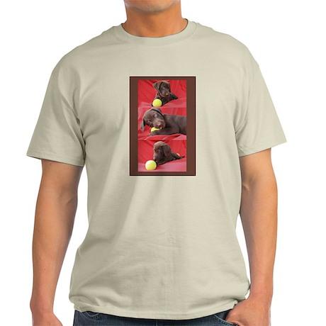 Lab Puppy Collage Brown Light T-Shirt