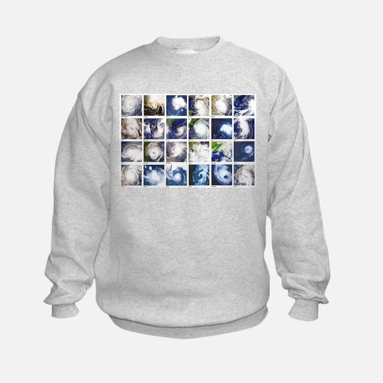 Cute Hurricanes Sweatshirt