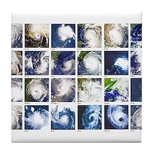 Cute Hurricanes Tile Coaster