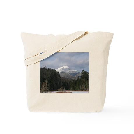 An Adirondack Winter Tote Bag