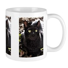 Black Cats Rule Watercolor Mug
