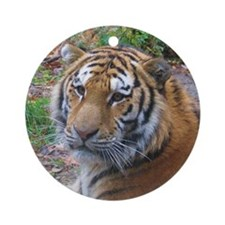 brother tiger Ornament (Round)