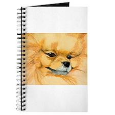 Pom Face Journal