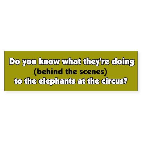 Circus Elephant Abuse Bumper Sticker