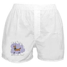 Funny Reindeer Boxer Shorts