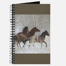 Winter Horse Play Journal