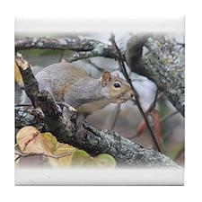 Squirrel # 2 Tile Coaster
