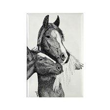 Gypsy Vanner Horse Rectangle Magnet