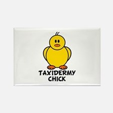 Taxidermy Chick Rectangle Magnet
