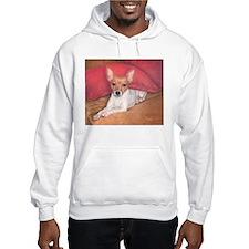 Toy Fox Terrier Jumper Hoody
