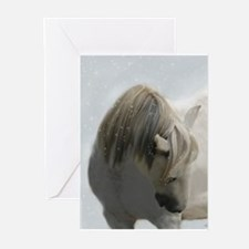 SnowQueen-Greeting Cards (Pk of 20)
